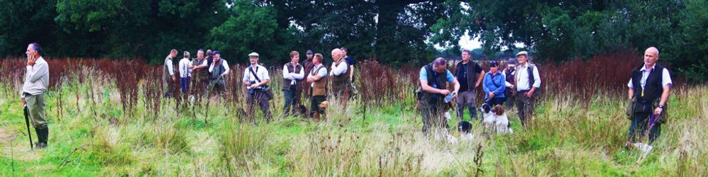 Duchy Working Gundog Club Training Day