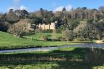 Caerhays Jan 2019